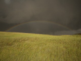 Thunderclouds and Rainbow Gather Above Little Missouri Grasslands