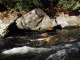 Water Rushing Past Boulders Along the Banks of the Nantahala River