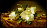 Magnolias on Gold Velvet Cloth