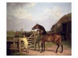 Bay Ascham'  a Stallion Led Through a Gate to a Mare  1804