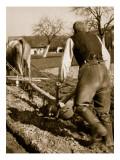 A German Farmer at Work