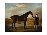 The Duke of Marlborough's