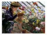 Chrysanthemums  1890