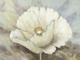 White Elegance II