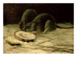 Two Rats  C1884