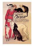 Clinique Cheron  Veterinary Medicine and Hotel