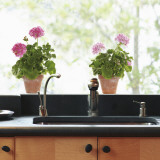 Pink Geranium Window Decal Sticker