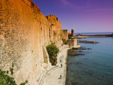 Chateau Royal and the Harbour at Collioure