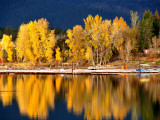 Autumn Colours on Shore of Lake Payette