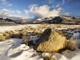 Winter in Lamar Valley