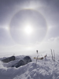 Solar Halo (Due to Blowing Snow and Ice Crystals) Above Southern Patagonian Icecap