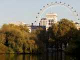 London Eye from Green Park
