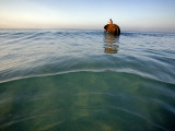 Elephant 'Rajes' Wading into Sea with His Mahout on Back