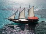 Aerial of Jolly Pirate Tourist Sail Boat Near Palm Beach