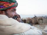 Camel Trader Overseeing Camels