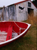 Red Boat Outside Shed with a Stop Whaling Sign