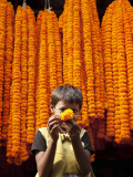 Little Girl Showing Off Marigold That She Stole from Beautiful Strings of Flowers