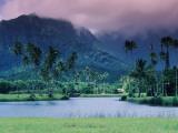 Looking across Tropical Landscape Up to Mt Waialeale from Hanalei