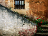 Adobe Stairs with Geraniums