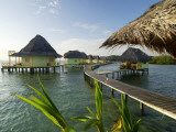 Wooden Walkways Leading Out to Cabins at Punta Caracol Hotel