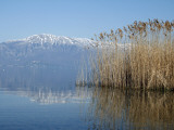 Lake Ohrid Shore with Macedonian Mountains in Background