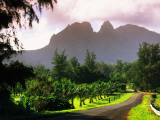 Road Through Lush Vegetation at Anahola with Mountain Backdrop