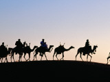 Desert Just Outside Timbuktu  Tuareg Camels at Sunset