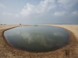 Man-Made Shrimp Pond