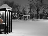 Public Telephone Box in Park  Covered in Snow  Ottowa-Cho