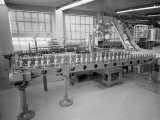 Interior of Bottling Plant With Conveyor Belts