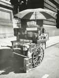 Street Hot Dogs Vendor Cart