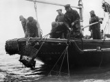 Oyster Dredgers