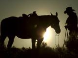 Cowboy With His Horse at Sunset  Ponderosa Ranch  Oregon  USA