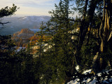Bristlecone Pines Above Cedar Breaks at Sunset in Wintercedar Breaks National Monument  Utah  USA