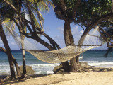 Hammock Tied Between Trees  North Shore Beach  St Croix  US Virgin Islands