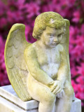 Statue of a Cherub in Bonaventure Cemetery  Savannah  Georgia  USA