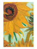 Twelve Sunflowers (detail) Giclée premium par Vincent Van Gogh