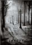 Les Escaliers de Montmartre, Paris Reproduction montée par Brassaï