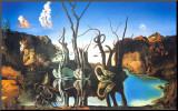 Cygnes reflétant des éléphants Reproduction montée par Salvador Dalí
