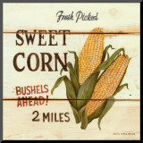 Maïs - Fresh Picked Sweet Corn Reproduction montée par David Carter Brown