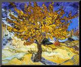 Mûrier à Saint-Rémy, 1889 Reproduction montée par Vincent Van Gogh