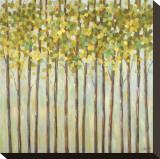 Different Shades of Green Tableau sur toile par Libby Smart