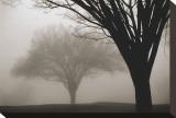 Memories of Winter Tableau sur toile par David Winston
