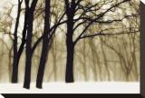 Rêves passés Tableau sur toile par David Winston