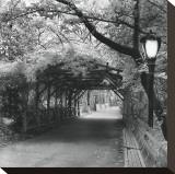 Central Park Pergola