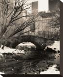 Central Park Bridges IV
