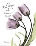 Blackberry Tulips  Love