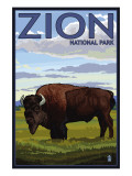 Zion National Park  UT - Bison