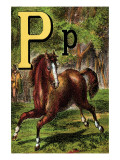 P For the Pony That Plays In the Park