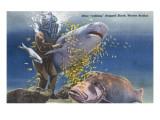 Marineland  Florida - Diver Moving Drugged Shark at Marine Studios